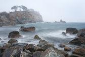 Peninsula in the fog — Stock Photo
