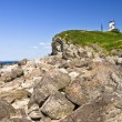 Stock Photo: Lighthouse on the rocky shore