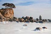 Sul mare di ghiaccio — Foto Stock