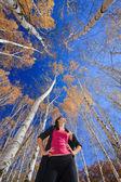 Krásná mladá dívka v březový háj — Stock fotografie