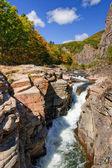 Mountain stream in autumn forest — Foto de Stock