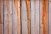 Bare texture — Stock Photo