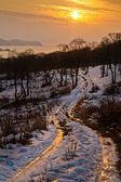 Icy road — Stock Photo
