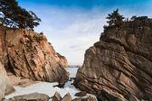 洛基冬季海景 — 图库照片