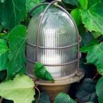 ������, ������: Garden lantern