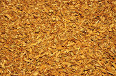 Shredded oak bark like texture or background — Stock Photo