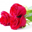 Red roses — Stock Photo #4163343