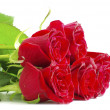 Red roses — Stock Photo #4820221