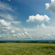Royalty-Free Stock Photo: The landscape sky with clouds and grass.