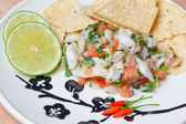 Ceviche Platter — Stock Photo