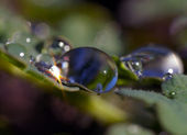 Droplets — Stockfoto