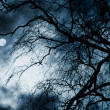 Stock Photo: Scary dark scenery with naked trees, full moon and clouds