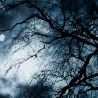 Scary dark scenery with naked trees, full moon and clouds - Stock Photo