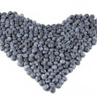 Blueberry Heart Organic — Stock Photo