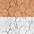 Tilable Texture - Dry Desert Ground — Stock Photo #4040138