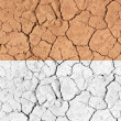 Stock Photo: Tilable Texture - Dry Desert Ground