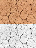 Tilable texture - droge woestijn grond — Stockfoto