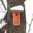 Nesting Box Covered by Snow — Stock Photo