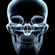 Human Skull - X-Ray Front View — Stock Photo