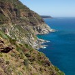 Chapman's Peak - Photo
