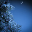 Stock Photo: Christmas night