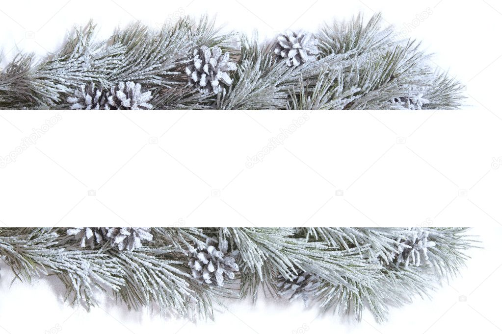 Frame made of fir branches — Stock Photo #4255069