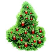 Vánoční jedle — Stock vektor