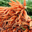 Carrots - Stock fotografie