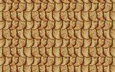 Snickerdoodle wallpaper — Stock Photo