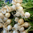 Stock Photo: Turnips for sale