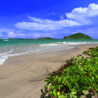 Stock Photo: Beach on Saint Lucia