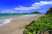 Beach on Saint Lucia — Stock Photo