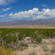 Mojave Desert - southern California — Stock Photo