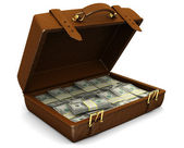 Case with money — Stock Photo