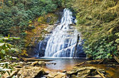 Waterfall With Rocks and Rhododendron — Stock Photo
