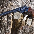 Long Barrel Hand Gun — Stock Photo