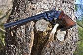 Long Barrel Hand Gun — Stock Photo