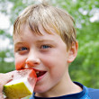 Young Boy Eating Watermelon — Stock Photo #5224630