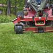 Riding Lawnmower - 