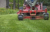 Riding Lawnmower — Foto Stock