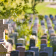 Montreal cemetery — Stock Photo