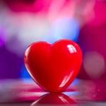 Heart — Stock Photo #5265225