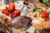 Fruits de mer — Photo