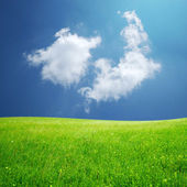 Fluffy cloud and green field — Stock Photo
