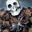 bouquet di Halloween — Foto Stock #3974876