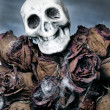 Halloween bouquet - Stockfoto