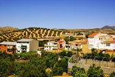 Rural village in Andalusia, Spain — Stock Photo