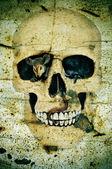 Halloween's skull — Photo