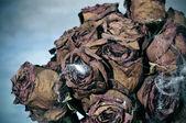 ハロウィーンの花束 — ストック写真