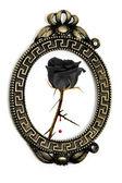Emo rose — Stock Photo
